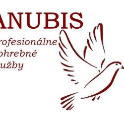Logo PPS ANUBISbordo